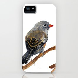 Bird Junco with Lillies iPhone Case
