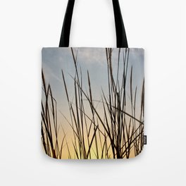 Wonderful sunset with teasel Tote Bag