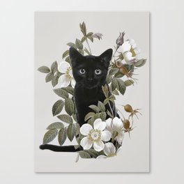 Cat With Flowers Leinwanddruck