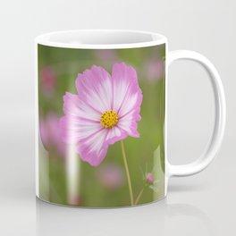 Pink and White Cosmos Coffee Mug