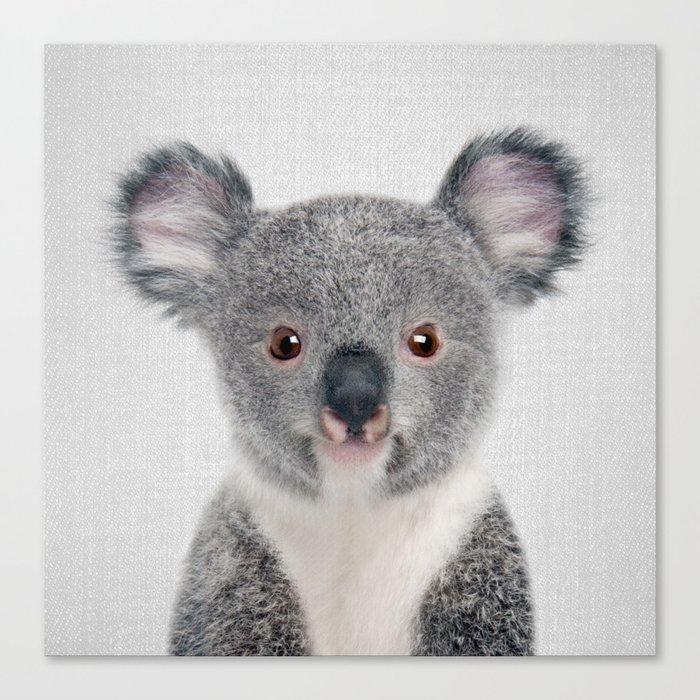 Baby Koala - Colorful Canvas Print