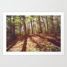 lothlorien 2 Art Print