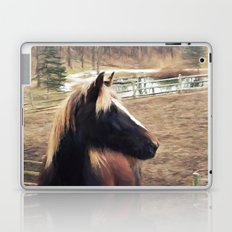 Blackfire's Caesia Laptop & iPad Skin