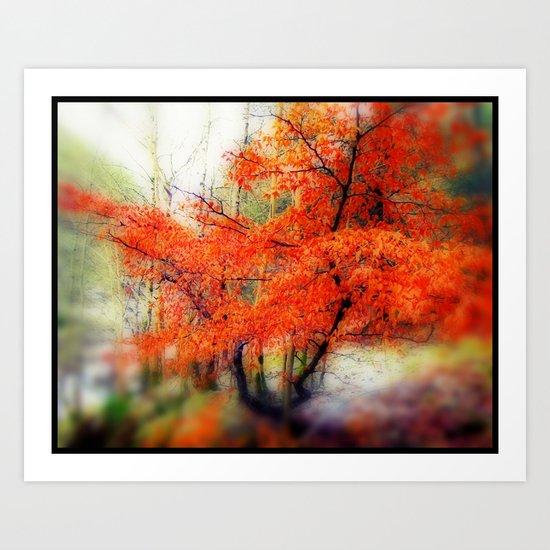 - Orange - Art Print