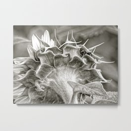Bee hiding out Metal Print