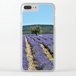 Lavender field, Provence, France Clear iPhone Case