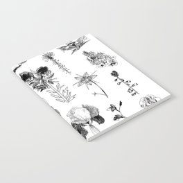 All the wild Notebook