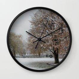 Public Garden snow Wall Clock