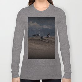Waiting Gulls on Top of A Sand Dune Long Sleeve T-shirt
