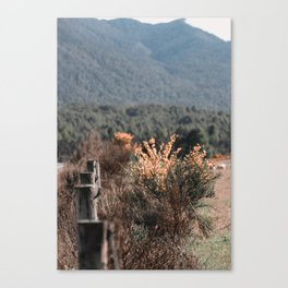 Rugged Fence Canvas Print
