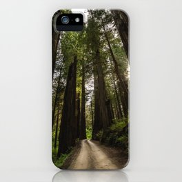 Redwoods Make Me Smile - Nature Photography iPhone Case