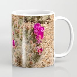Desert Cacti in Bloom - 2 Coffee Mug