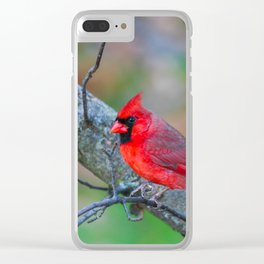 Bright Red Cardinal Clear iPhone Case