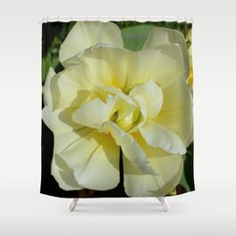 Double Cream Tulip by Teresa Thompson Shower Curtain