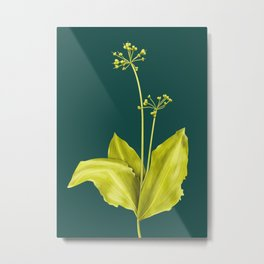 Wild Garlic Plant Botanical Art In Green Metal Print