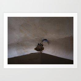 Swallow bird nest in the bazaar of Isfahan | Travel photography Iran Art Print