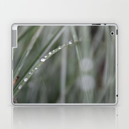 Sea Grass Laptop & iPad Skin