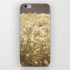 Spinning daisies iPhone & iPod Skin