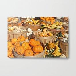 Pumpkins at the Farmers Market Metal Print