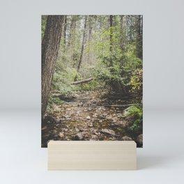 The Montana Collection - Shortcut Creek Mini Art Print