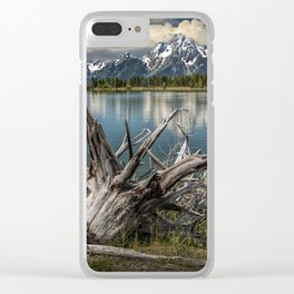 Tree Stump on the Northern Shore of Jackson Lake at Grand Teton National Park Clear iPhone Case
