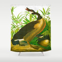 Canada Goose John James Audubon Vintage Scientific Birds of America Illustration Shower Curtain