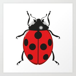 Coccinellidae Red Art Print