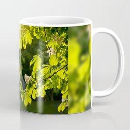 Flowering Aesculus horse chestnut foliage Coffee Mug
