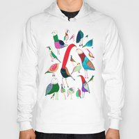 birds Hoodies featuring  Birds by Ashley Percival illustration