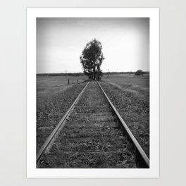 Tree tracks Art Print
