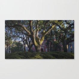 Savannah Tree Canvas Print