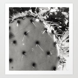 Embrace the Spikes Art Print