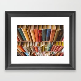 The Colorful Library Framed Art Print
