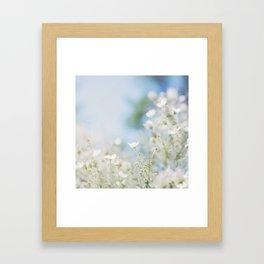 . sweet spring . Framed Art Print