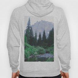 Mountain Through The Lush Forest Hoody