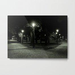 Divenskiy garden (city park) at night, St. Petersburg (Russia) (2018-7SPB98) Metal Print
