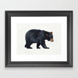Watercolour Black Bear Drawing Framed Art Print