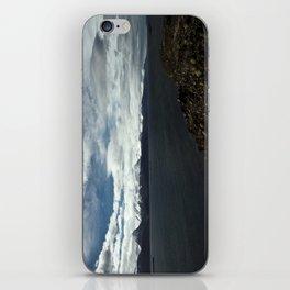 Patagonia iPhone Skin