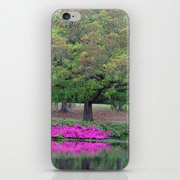 Natural Waterfront iPhone Skin