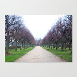 A Wintry Day Canvas Print