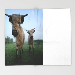 Young White High Park Cattle Throw Blanket
