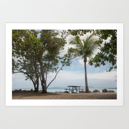 Cinnamon Bay Picnic Table, St John 2010 Art Print
