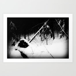 Forest Dark VI Art Print