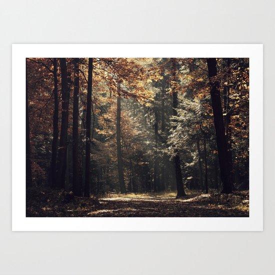 Autumn light and rays - horizontal Art Print