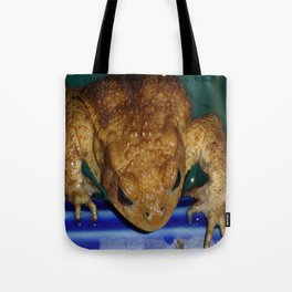 Bufo Bufo Clinging To The Edge Of A Swimming Pool Tote Bag
