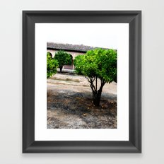 Courtyard Framed Art Print