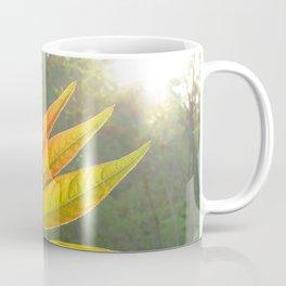 Watercolor Bush, Part, Staghorn Sumac 01, Eno River, North Carolina Coffee Mug