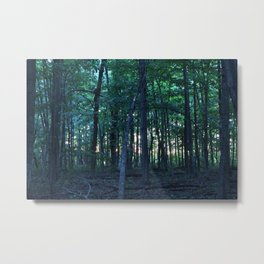 Deep Woods Metal Print