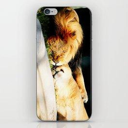 Cat Nap (Jungle Love) iPhone Skin