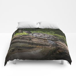 Painted Turtle sitting on a Log Comforters
